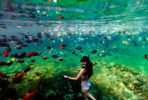 A young girl snorkeling and enjoying the underwater parade